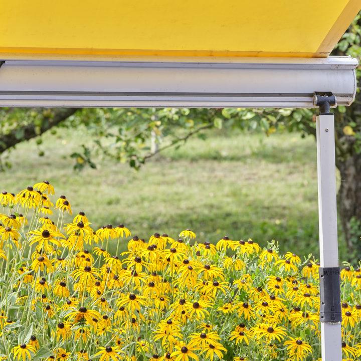 natur und technik vereint terrassenmarkise
